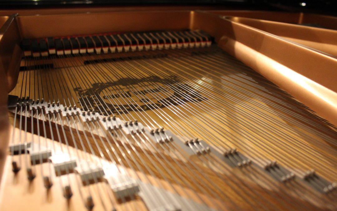 Piano Technical Advise by Maestro Juan Rezzuto